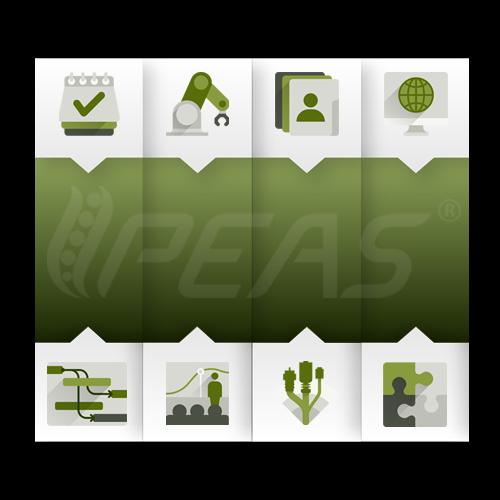 menedzsment PEAS